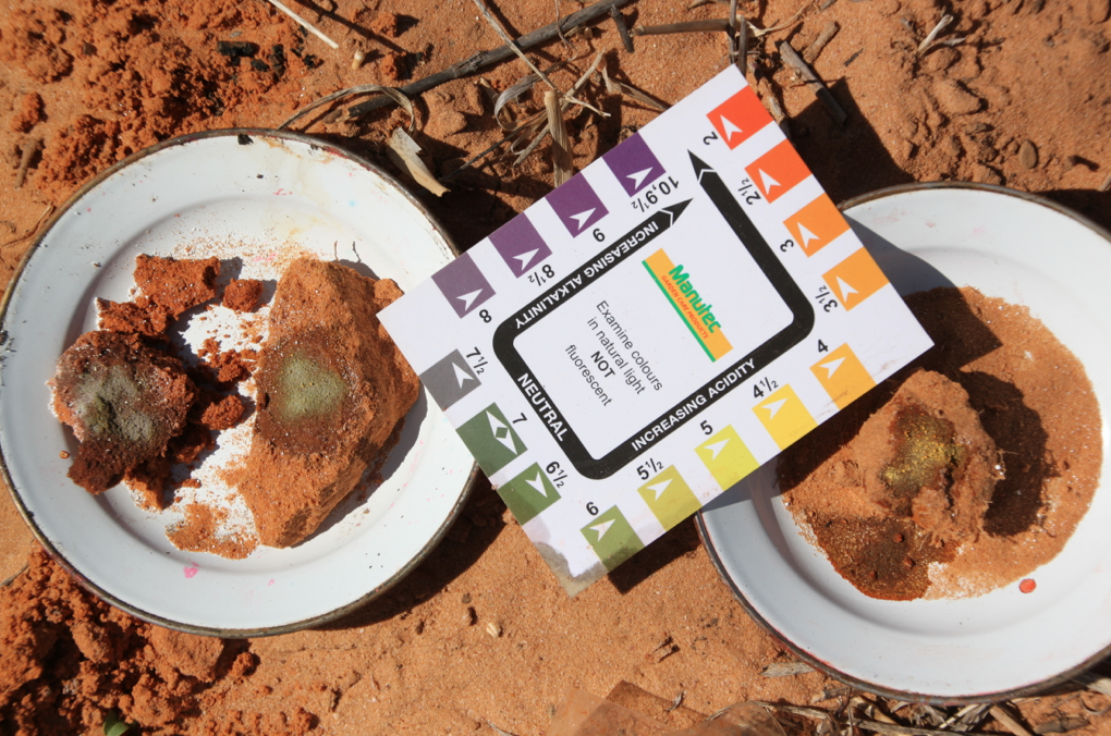 Mallee Sand Soil pH Indicator