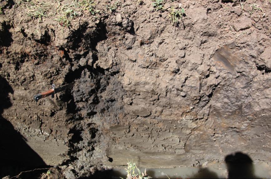 Soil Pit Floodplain 2